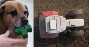 How a Farming Firm By chance Invented Probably The World's Strongest Canine Toy