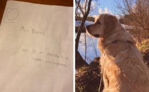 Boy Pens The Sweetest Sympathy Card To Trainer Mourning The Loss Of Her Canine