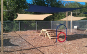 Joplin Humane Society Will get New And Improved Play Yard Thanks To Your Assist!