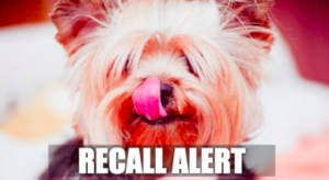 One other Canine Meals Will get Recalled Due To Potential Salmonella Contamination