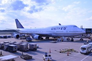 United Airways Suspends Flying Canine In Cargo