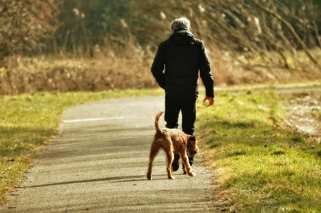 5 Tips For Building An Unbreakable Bond With An Adult Rescue Dog