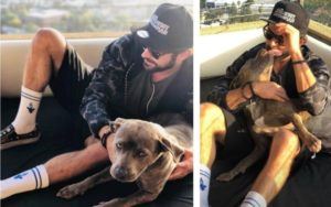 Zac Efron Takes On The Function Of Canine Dad To Loss of life Row Rescue Pup