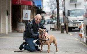 Patrick Stewart Groups Up With The ASPCA To Finish Canine Preventing