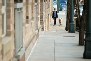 Canine Walker Watch Applications Are Serving to Preserve An Eye On Crime