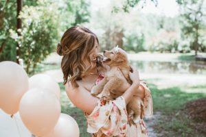 """Gender Reveal"" Pet Photoshoot Is Virtually Too Cute For Phrases"