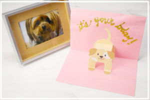 The Excellent Final Minute Reward For Canine-Loving Mothers!