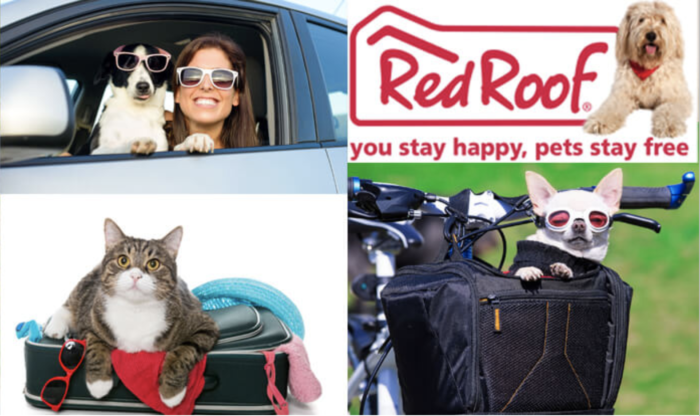 Red Roof Inn: Where Your Dog Stays–For Free!
