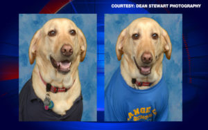 Scholar's Service Canine Honored With Yearbook Photograph & Plaque
