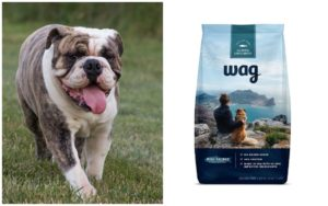 Amazon Breaks Into The Pet Trade With The Launch Of Their Canine Meals