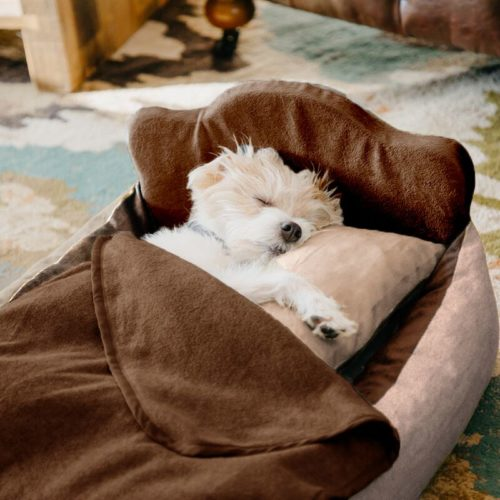 Paw Heart Mini Dog Bed Set – Light Brown/Dark Brown