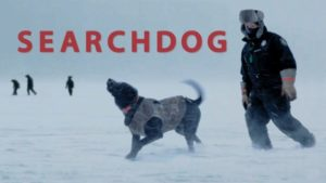 Indie Movie SEARCHDOG Captures Actual Bond Between People and Canines