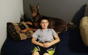 Boy Sells His Toys To Assist Pay For Service Canine's Care After An Surprising Analysis
