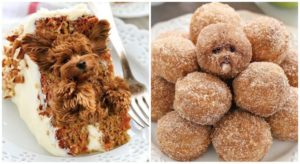 If You Love Cute Canines & Scrumptious Meals, These Photographs Will Make Your Day