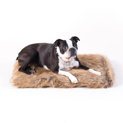 PACK&DEN Little Pup Tawny Fox Faux Fur Memory Foam Bed (SM)