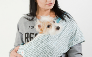 How A Canine Service Sling Can Preserve Your Canine Secure & How To Use One Safely