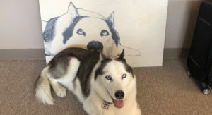 This Service Created an Unforgettable Technique to Imprint Your Canine's Portrait on Wooden