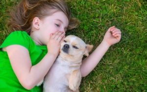 9 Childhood Advantages Of Dwelling With a Canine