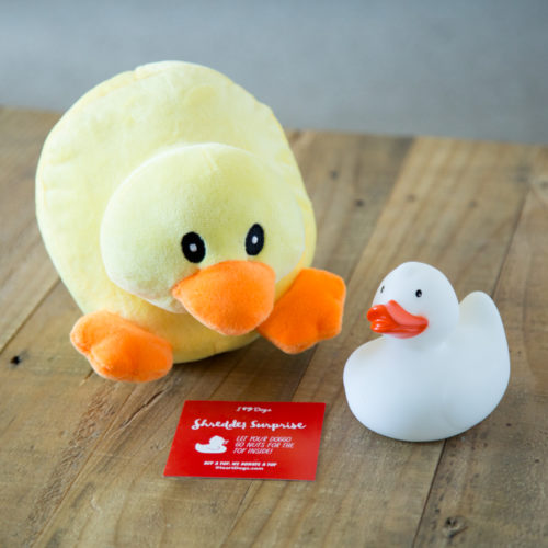 """Shredder Surprise """"Duck In A Duck"""" Plush Toy With Hidden Squeaky Rubber Ghost Duck"""