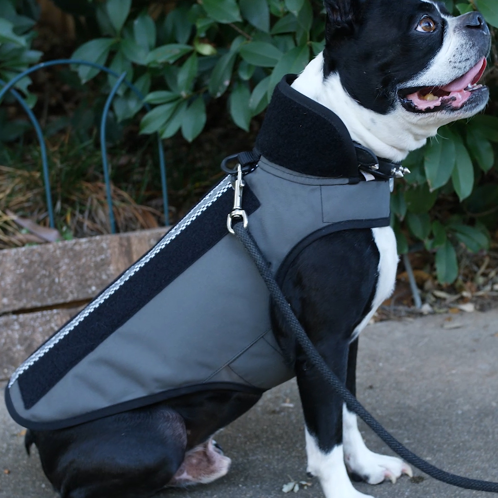 12953e17511e1 ... dog's injuries may still be fatal. The best way to ensure your pooch  survives a coyote attack is to protect their neck and body with a Predator  Vest™.