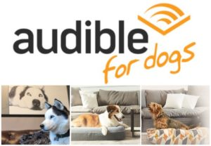 iHeartDogs Companions With Audible To Assist Feed Hungry Shelter Canines