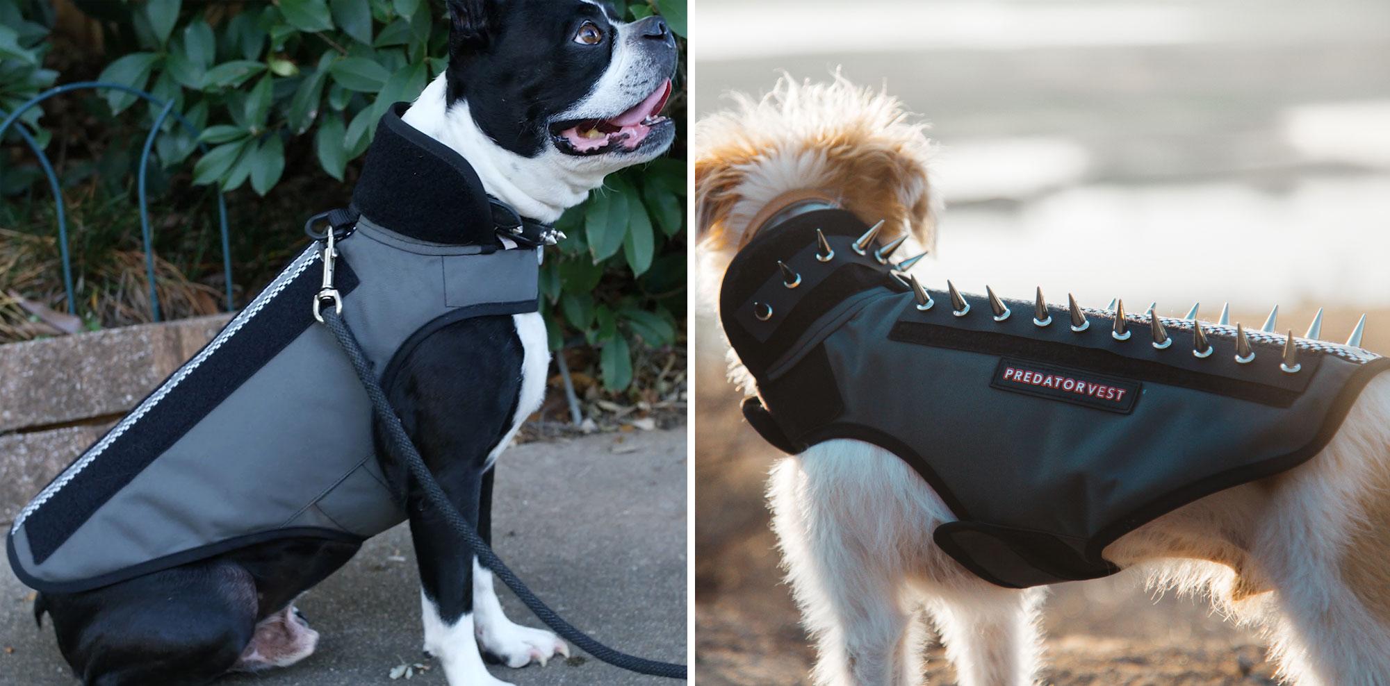 info for a733f e9b0f Predator Vest™ - Puncture Resistant Pet Armor Deters Coyote ...