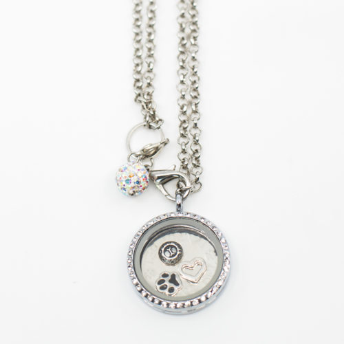 I Love My Pet Celebration Car Charm Locket Set