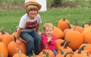 6-Yr-Outdated Boy Sells Pumpkins To Elevate Cash For A Diabetic Alert Canine