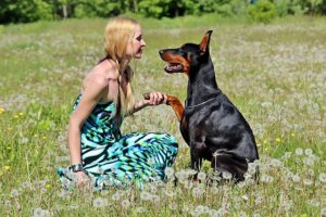 6 Methods To Inform Your Canine You Love Them in 'Doggie Language'