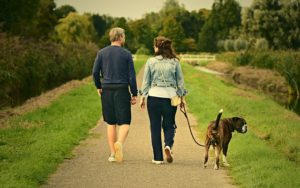 New Relationship App Helps Canine Folks Discover Pet Love