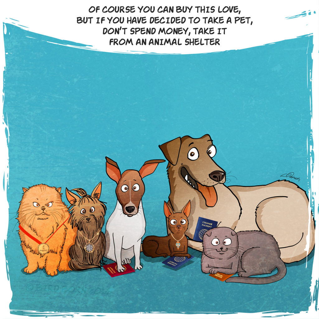Cute Comic Shows What It's Like To Adopt A Rescue Dog