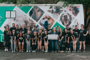 Rescue Rebuild and MuttNation Basis Crew Up To Assist Get Senior Canines Adopted
