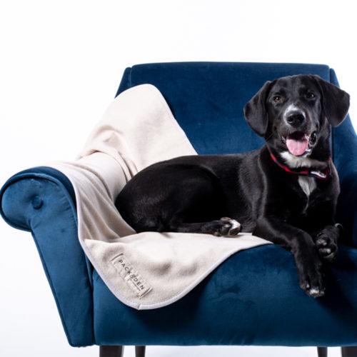 PACK&DEN Buy One Give One Premium Dog Blanket