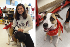 Rescue Canine Helps Parkland Teen Transfer Ahead After College Taking pictures