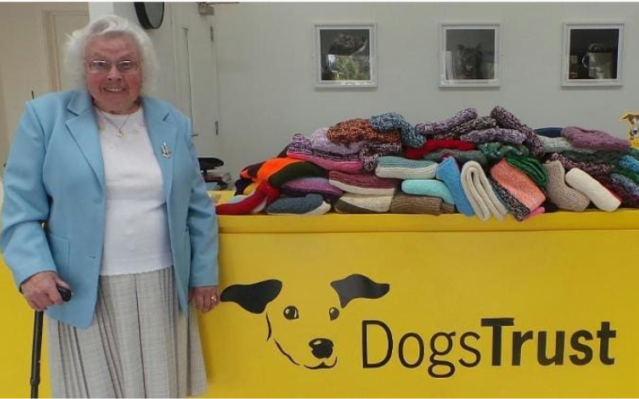 89-Year-Old Woman Has Knitted 450 Blankets & Sweaters For Shelter Dogs