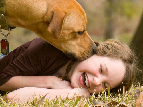 dog parents understand joy