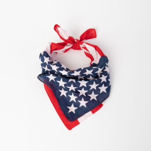 All American Flag Dog Bandana