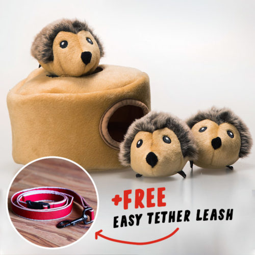 Hedgehog Hide & Hunt Puzzle Dog Toy + FREE Easy Tether Leash