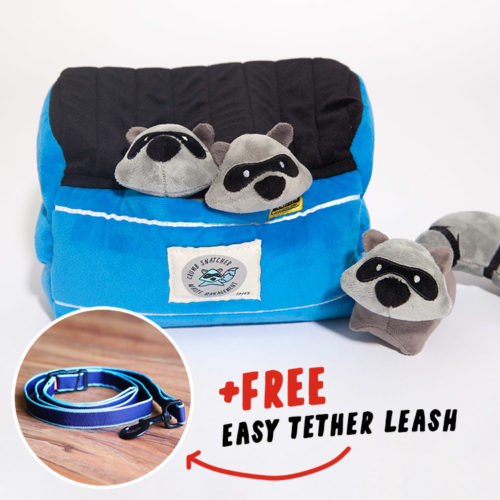 Raccoon Hide & Hunt Puzzle Dog Toy + FREE Easy Tether Leash