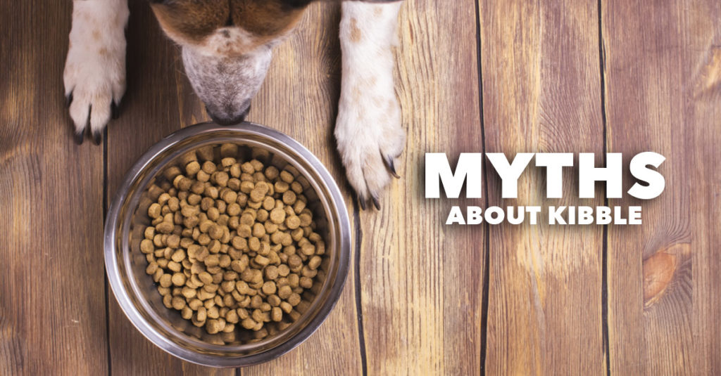 Common Myths about Dry Dog Food