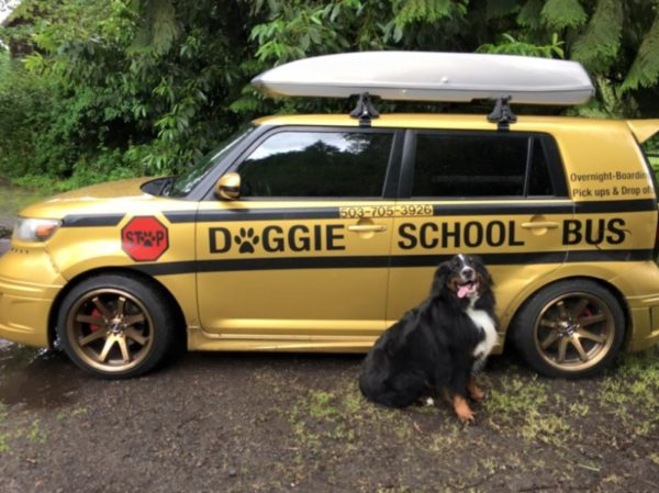 The original Doggie School Bus.