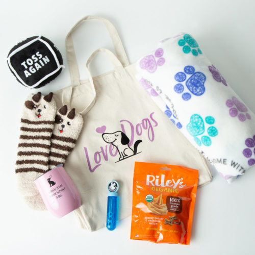 Comfy Cozy Doggy Date Pack