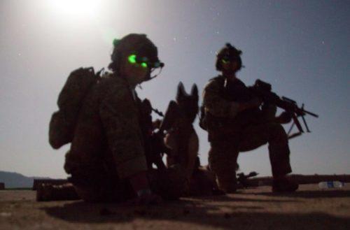 Layka on duty in Afghanistan