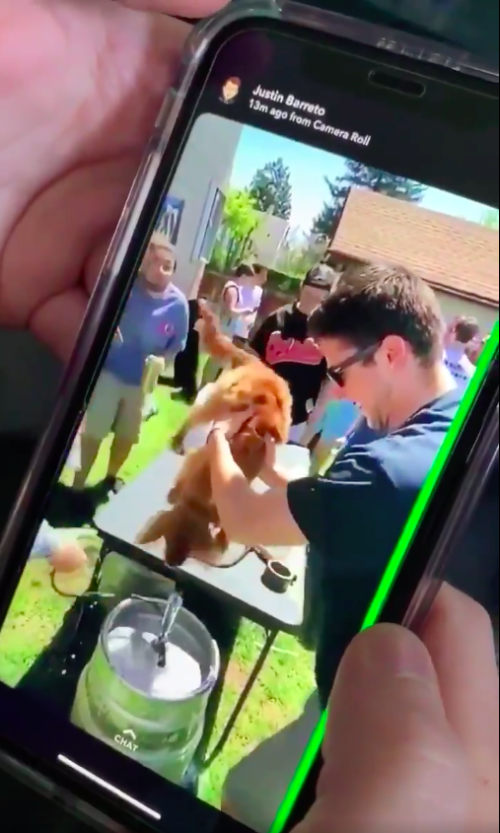 Puppy drinking from keg