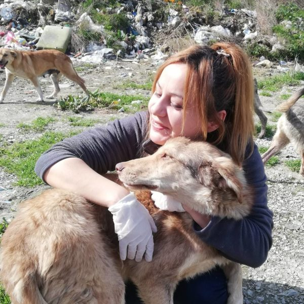 Sebahat Hanifeoglu, a resident from Kastamonu, Turkey, spends her days assisting the homeless pups in her city. (Photo by Sebahat Hanifeoglu)
