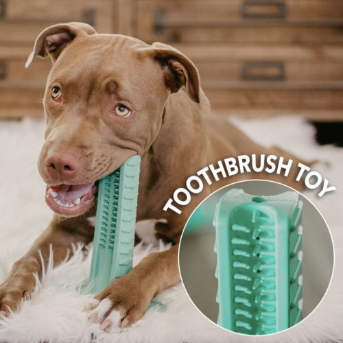 Special Offer! Brite Bite Brushing Stick: The Revolutionary Way to Clean Your Dog's Teeth They'll Actually Love!