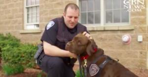 Officer Hank