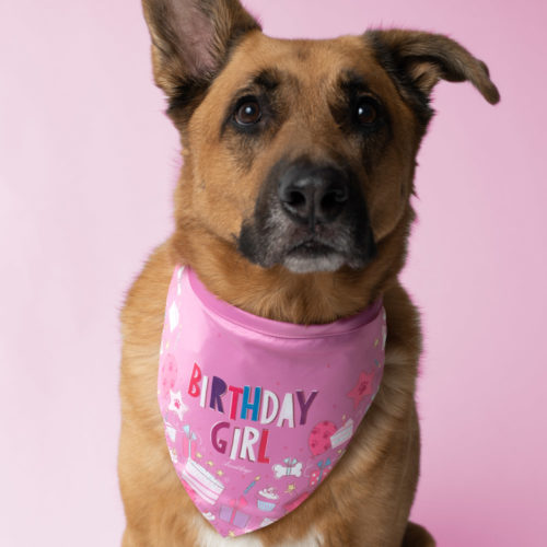 Birthday Girl Bandana