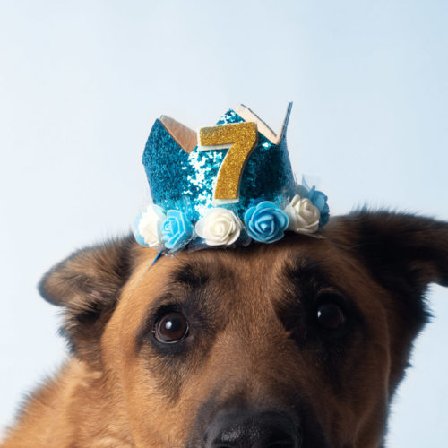 Stellar Blue Birthday Crown With Stick-On Numbers (0-9)