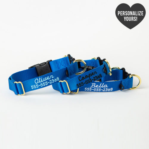 Safe Dog Emergency Break-Away Customizable Collar – Royal, Script